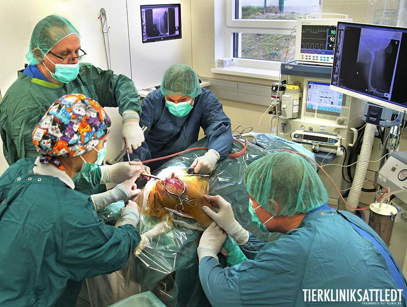 Das Einsetzen eines künstliche Hüftgelenkes erfordert einen hohen technischen Aufwand, große chirurgische Erfahrung und ein perfekt eingespieltes, speziell geschultes Team.