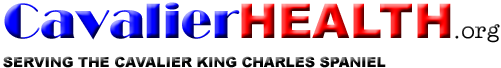 cavalierHealth-org-logo-131231